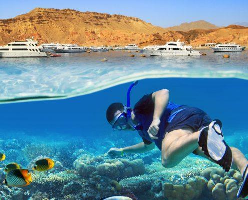 snorkeling Sharm el Sheikh